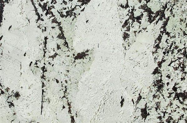 Chichester Granite - Granite worktop - alaskan white